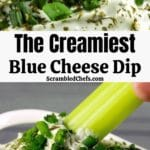 Blue cheese dip collage