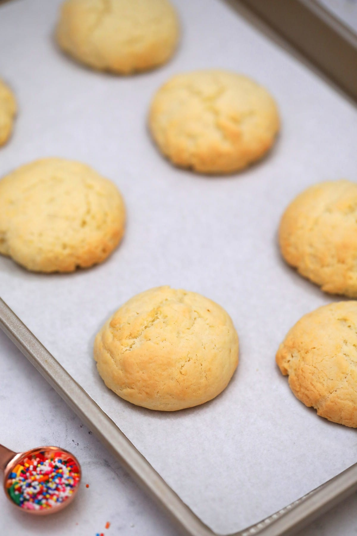 Baked sugar cookies on cookie sheet