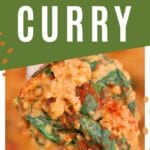 Curry on a wooden spoon