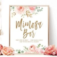 Blush Pink Floral Mimosa Bar Sign