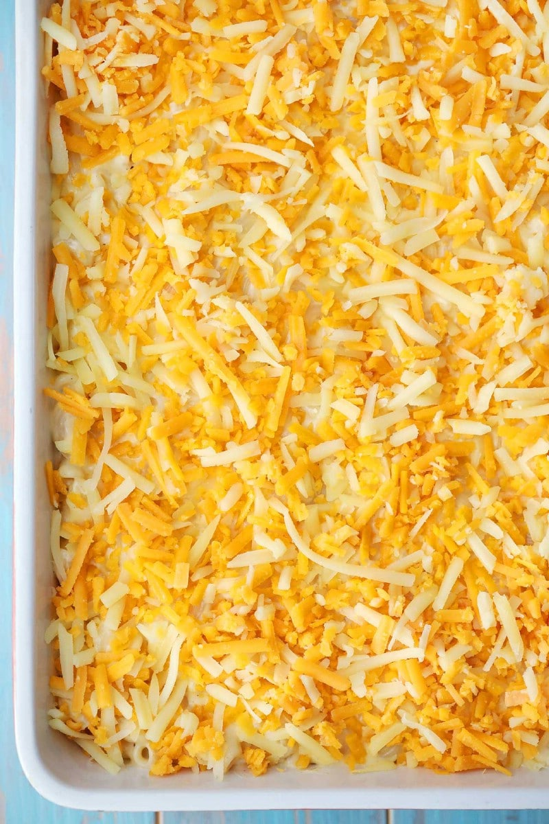 Casserole topped with cheese