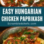 Chicken paprikash with noodles collage