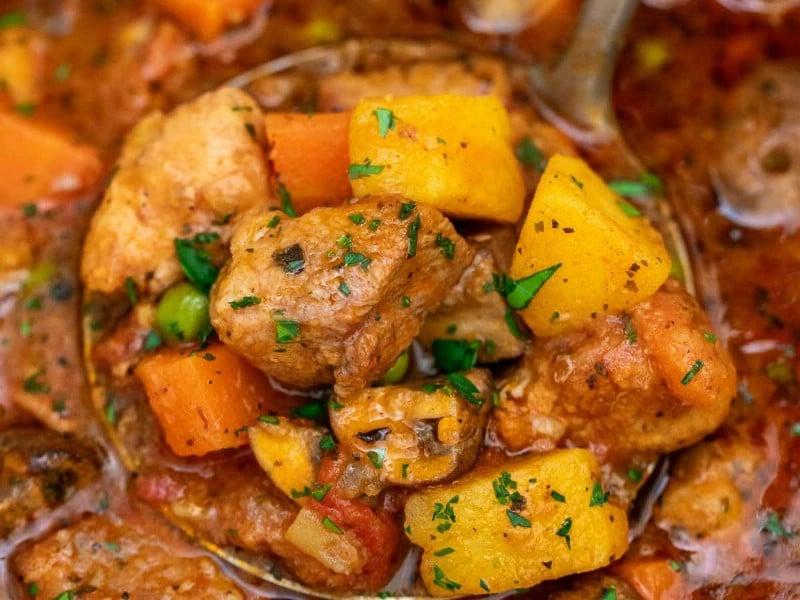 Ladel of pork stew