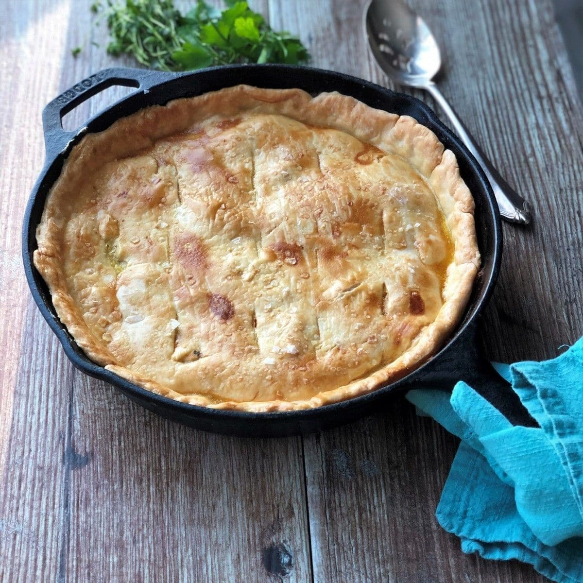 Chicken pot pie fresh out of the oven.