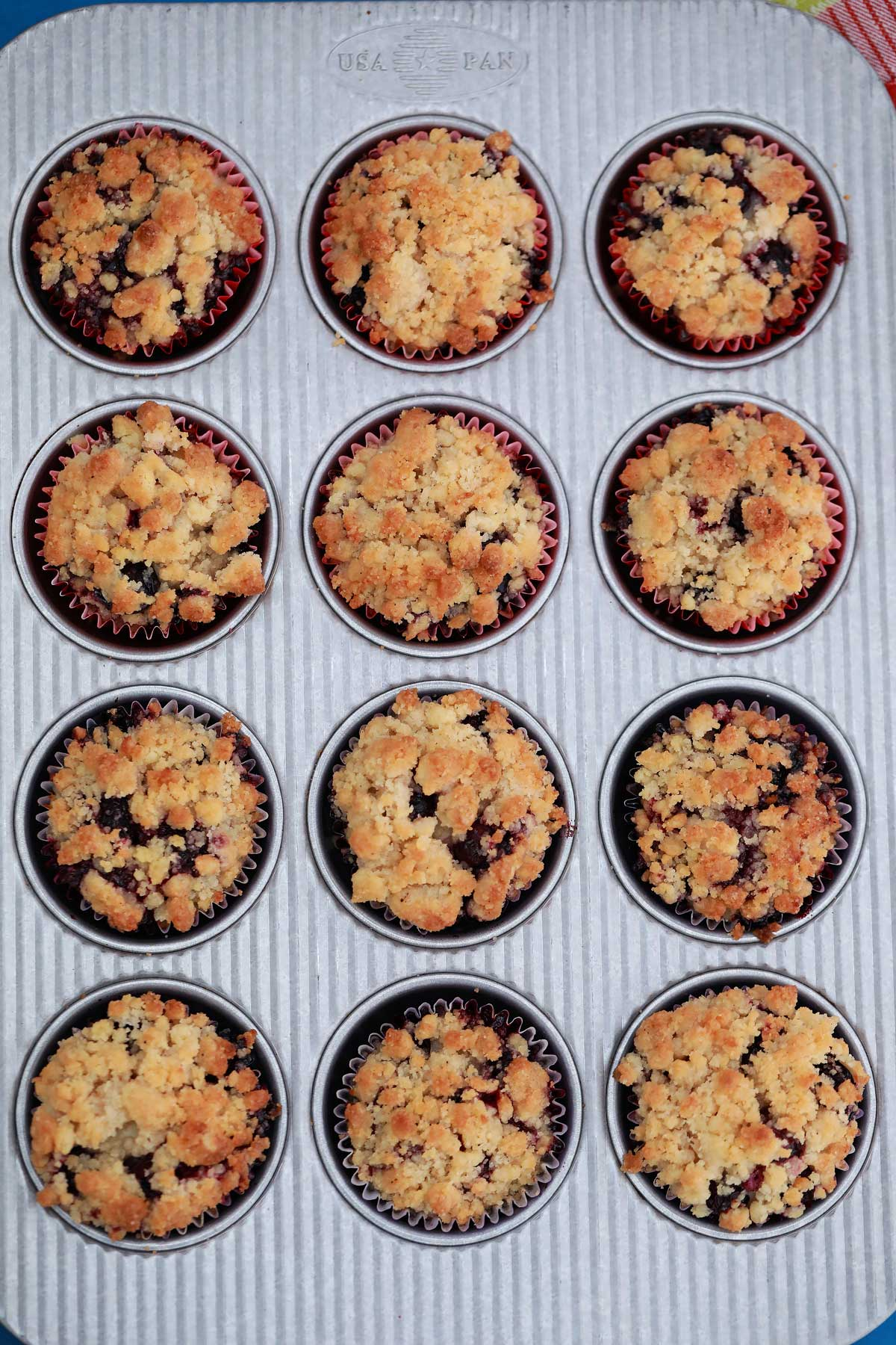 Baked blueberry muffins in tin