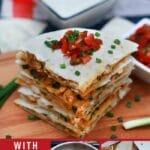 Chicken quesadilla collage