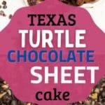 Texas Turtle sheet cake collage