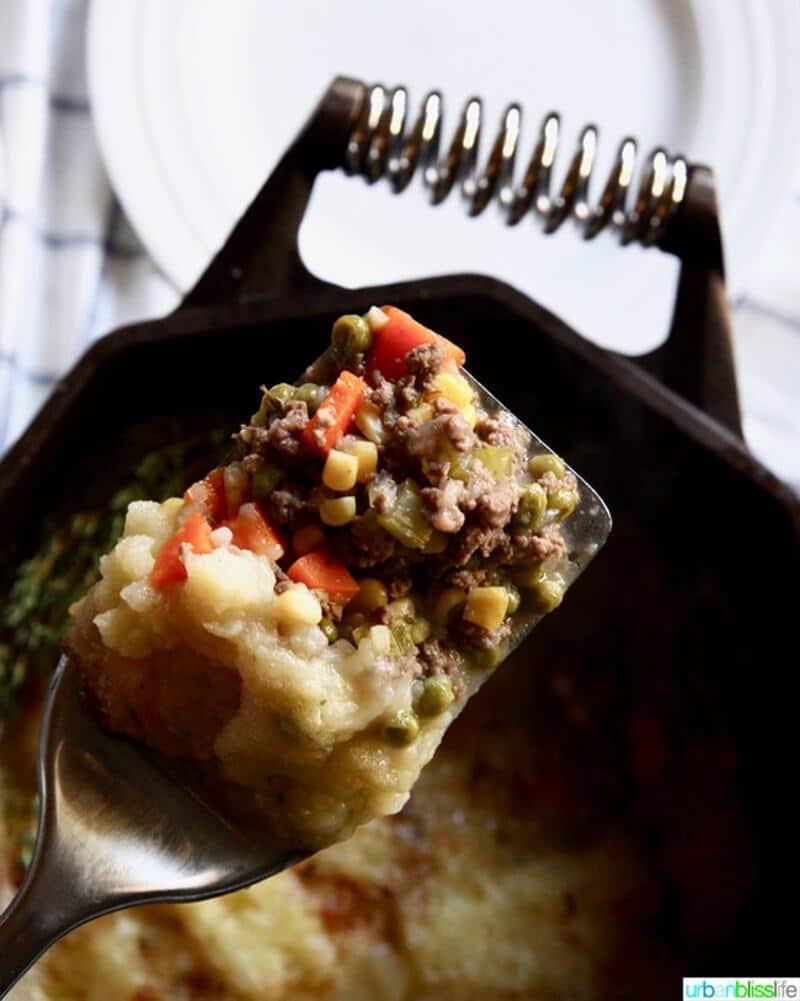 Spoon of casserole
