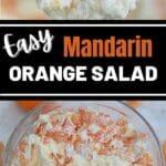 Mandarin orange salad collage
