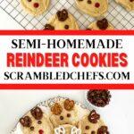 Reindeer cookies collage
