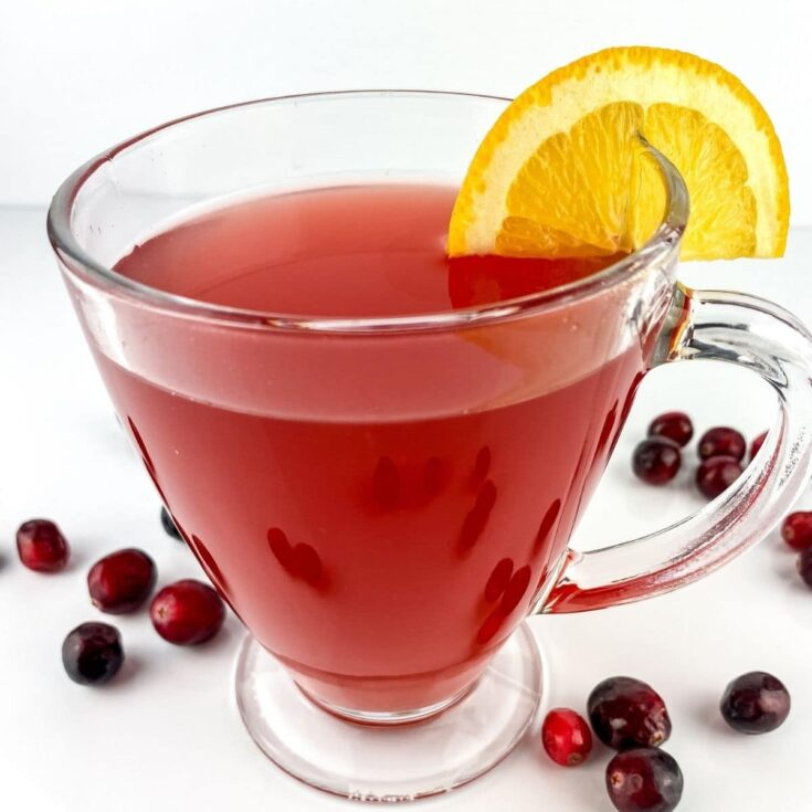 Mug of cranberry apple cider