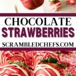 Chocolate dipped strawberries collage