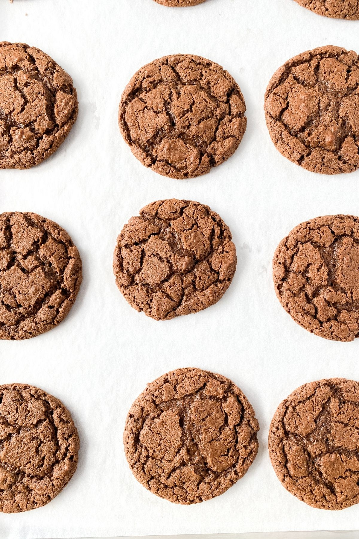 Baked chocolate cookies on tray