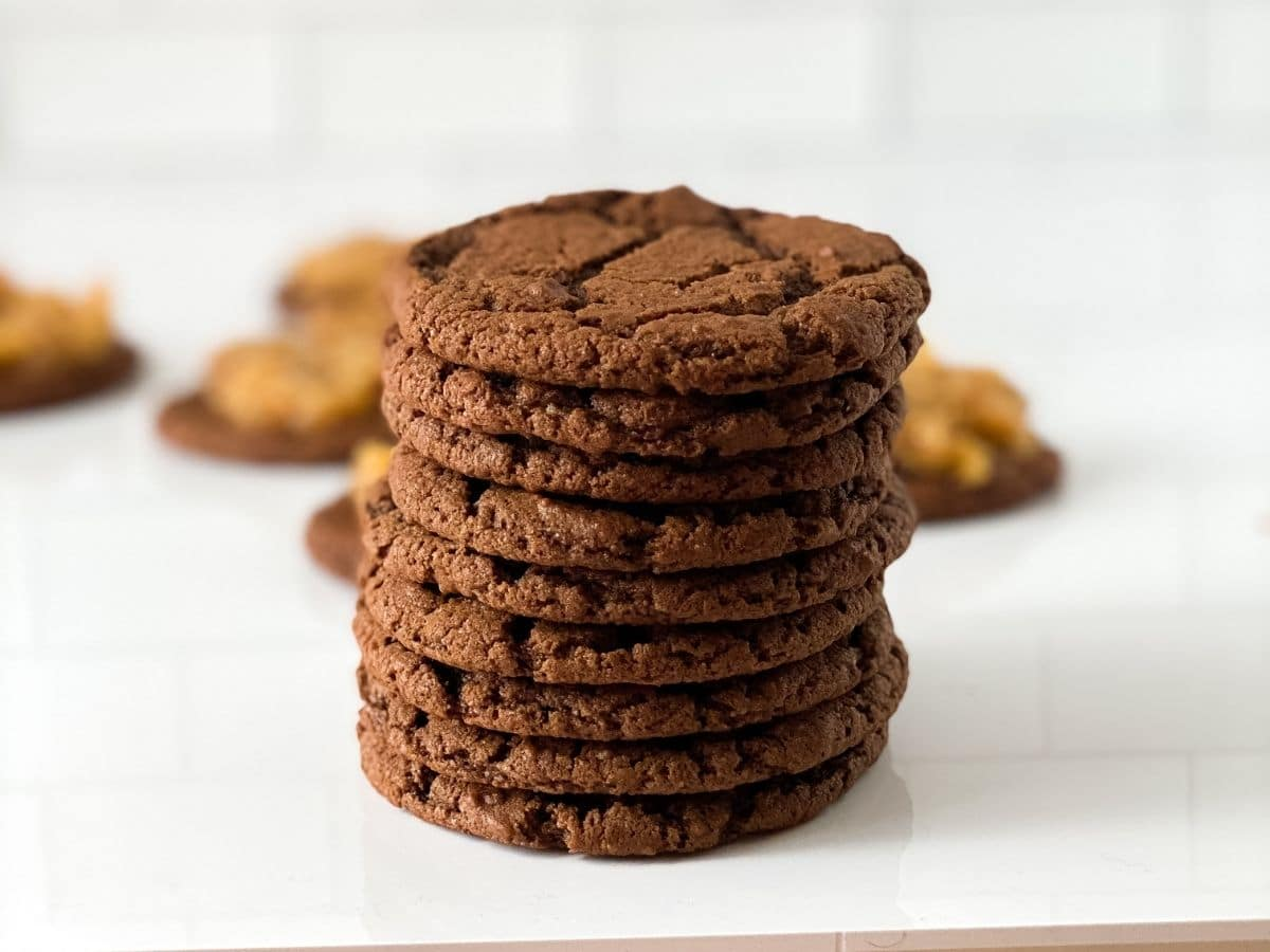 Stack of baked chocolate cookies