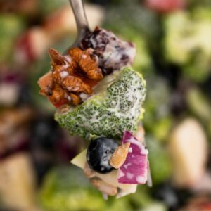 Fork with broccoli nuts and berries in dressing