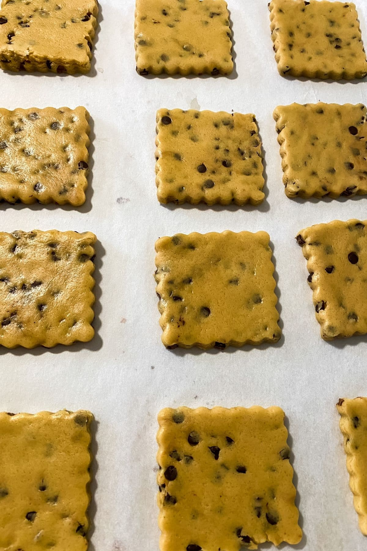 Cookies cut and on baking sheet before baking
