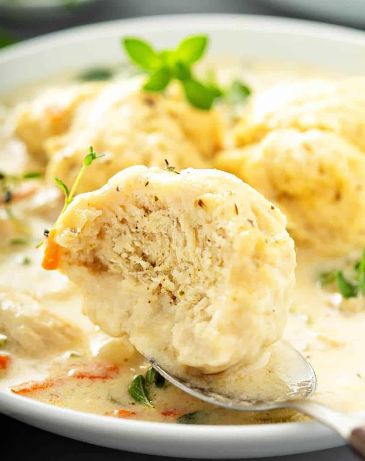 Chicken Dumplings DIY on a plate