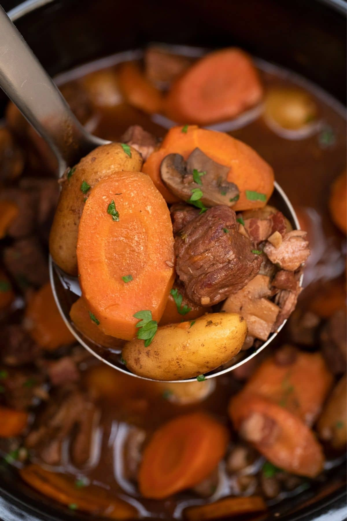 Spoon of beef and carrots over slow cooker