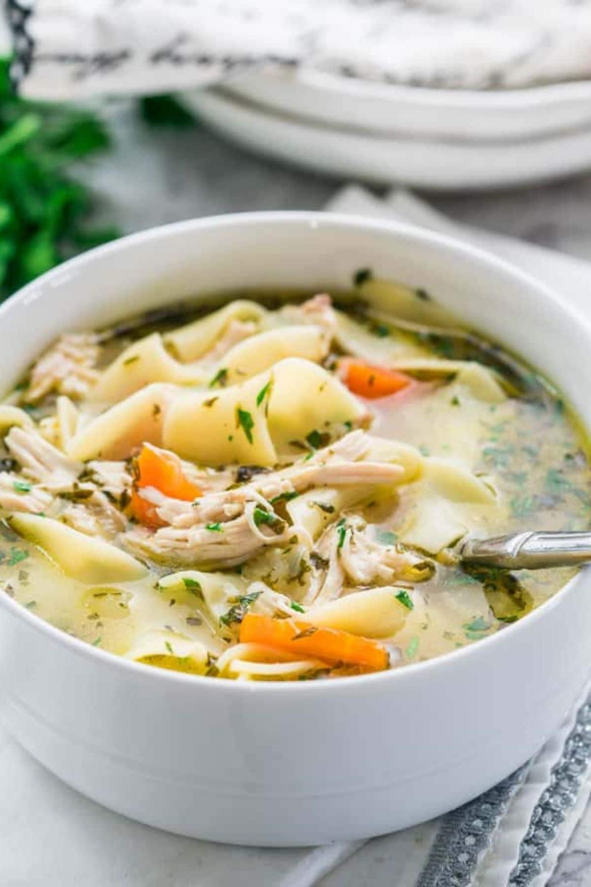 Chicken noodle soup in white bowl