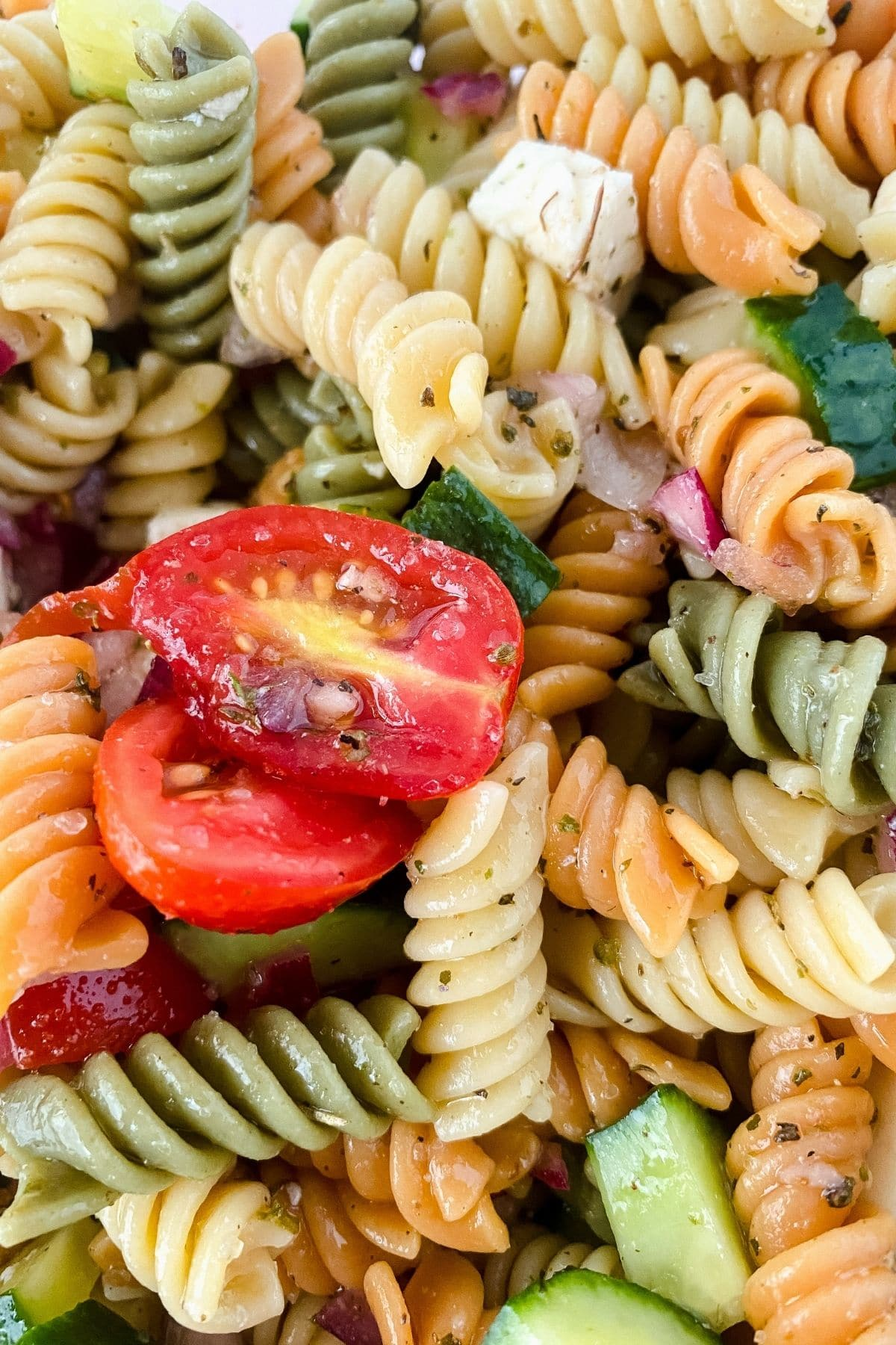 Close up image of pasta salad with tomato and colorful rotini