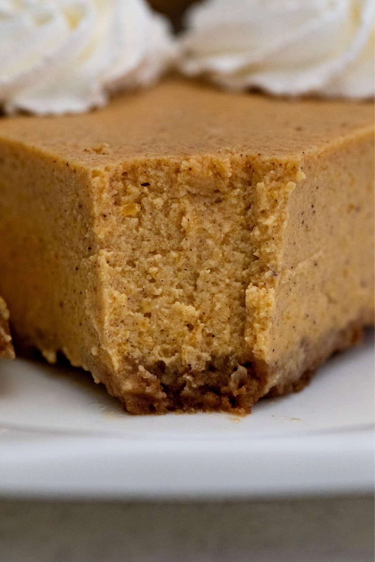 Front of pumpkin cheesecake with bite taken