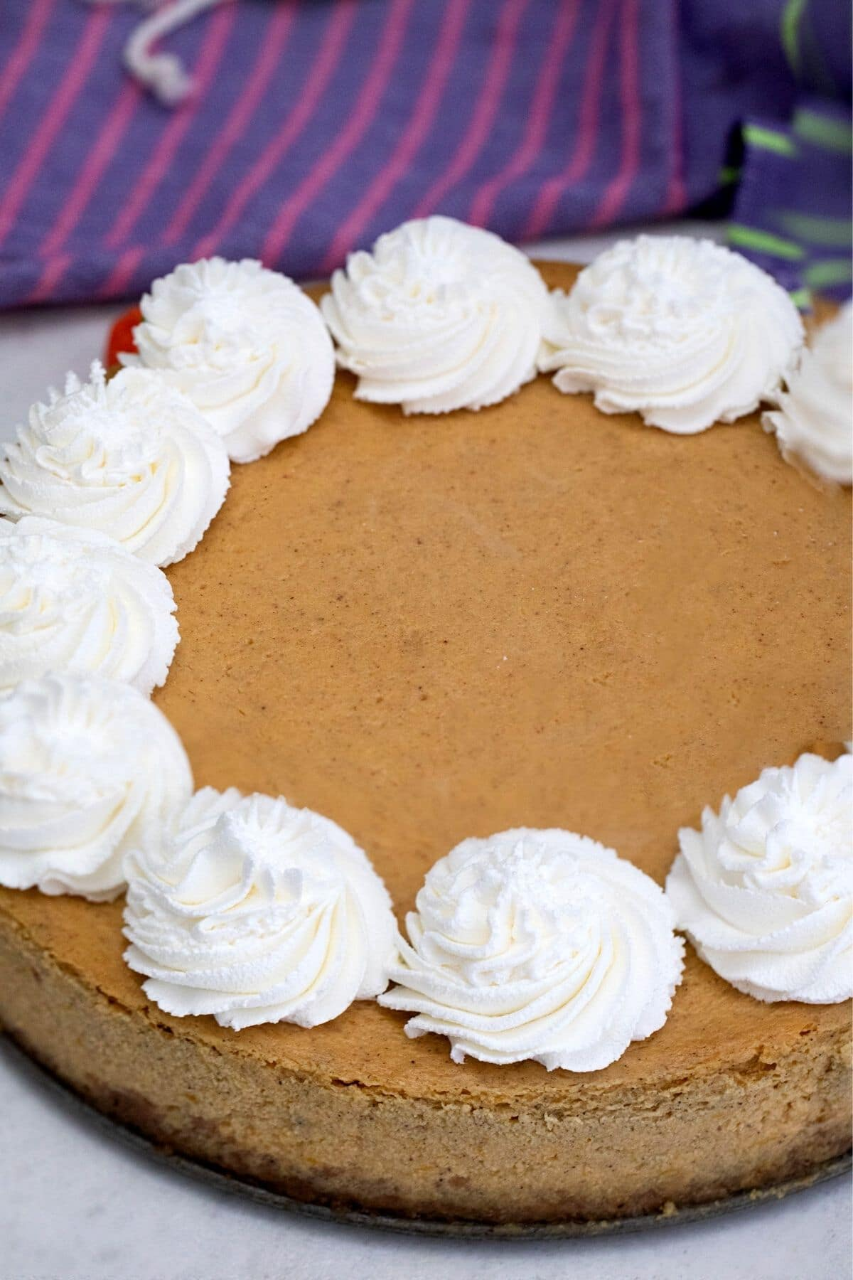 Whole cheesecake with dollops of whipped cream around edge