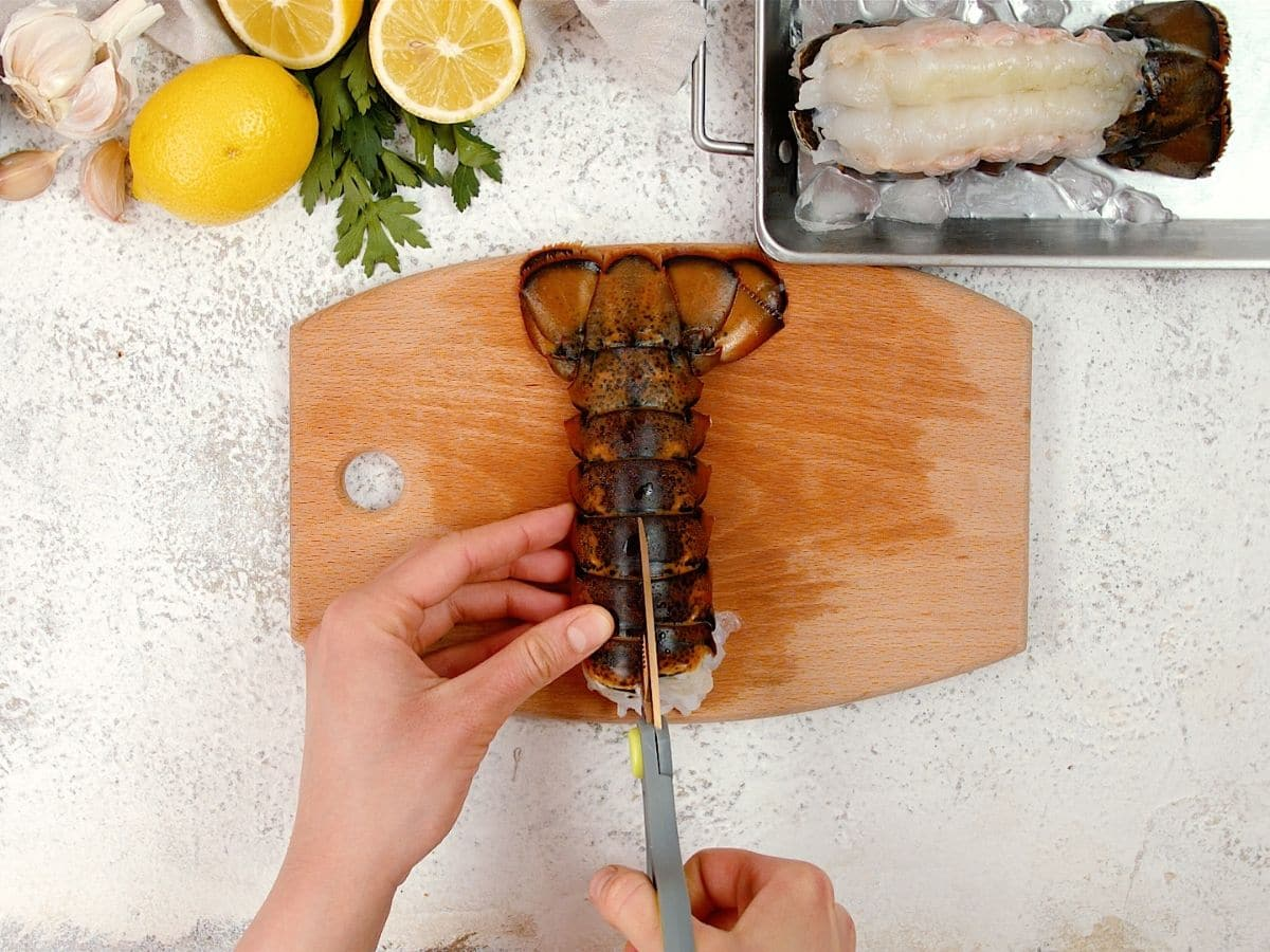 Hand using scissors to cut along top of lobster shell