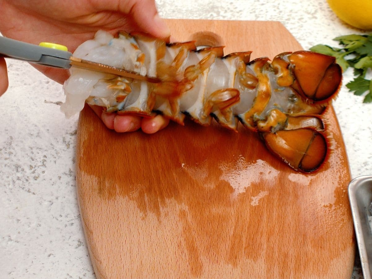 Scissors cutting bottom of lobster tail