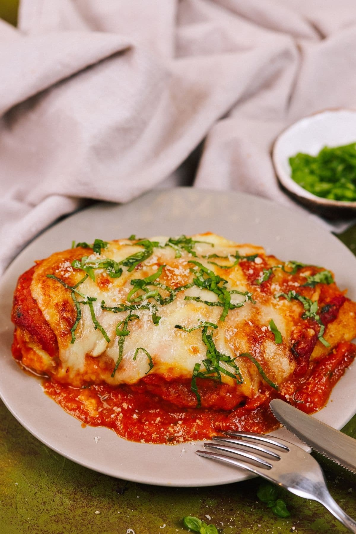 Plate of chicken in tomato sauce on green table with cloth napkin